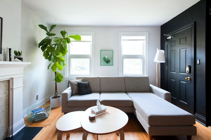 Charming and Vibrant Apartment in Parkdale