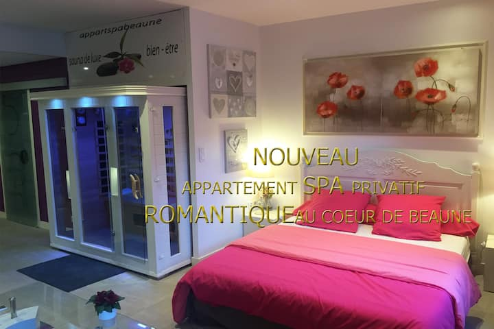 appartement spa privatif à beaune