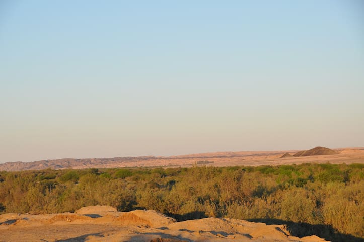 Namib River Camp #3