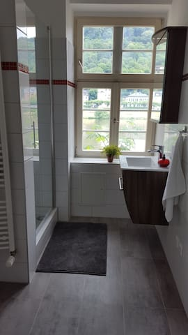 new bathroom with toilette power shower heated towel rail.