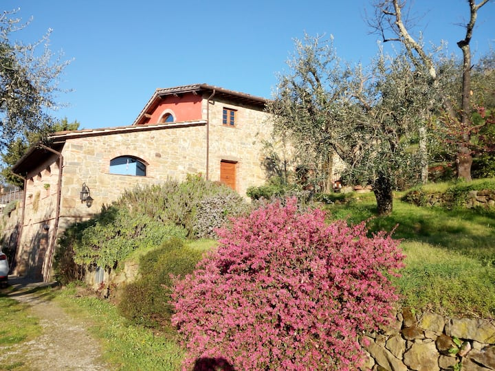 La limonaia: holidays in countryside