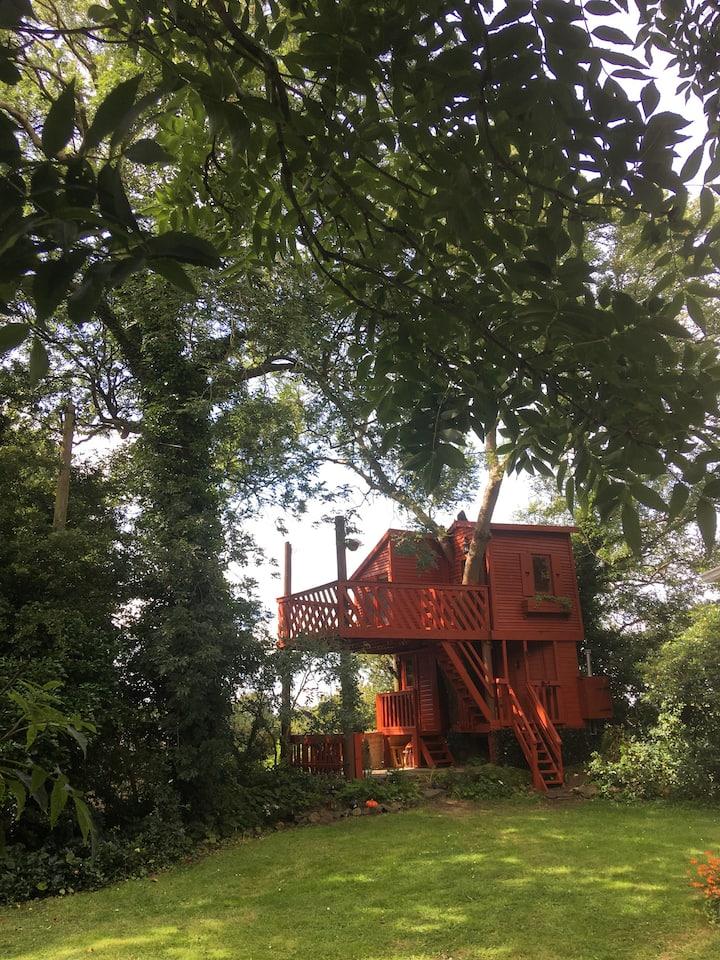 Fun Tree House Experience