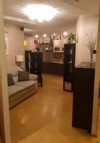 Двухспальные апартаменты 80 кв.м. напротив метро. - Sankt-Peterburg - Huoneisto