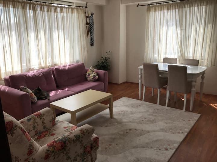 Living room / Oturma odası