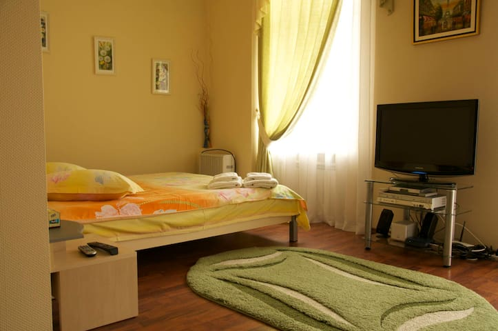 Cozy studio in front of St. Sophia - Kiev - Apartamento