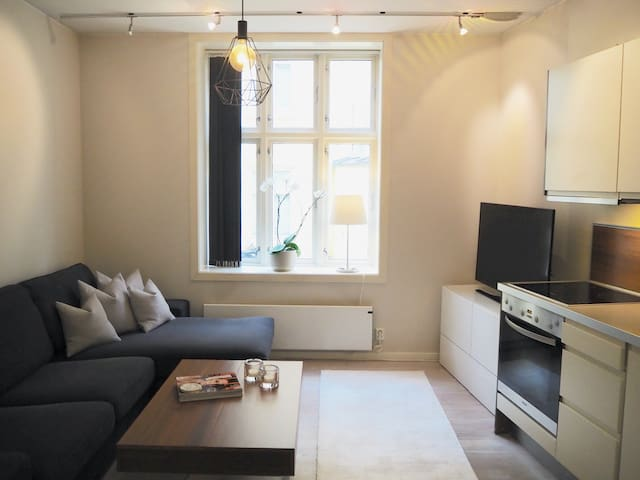 Fully equipped cozy apartment at Majorstuen