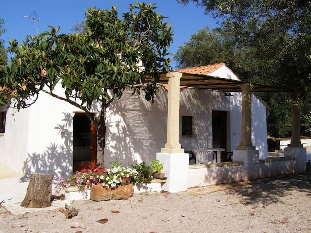 Typical Apulia country house - Casarano - Villa