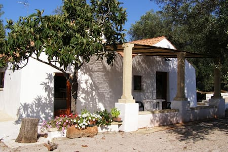 Typical Apulia country house - Casarano - Other