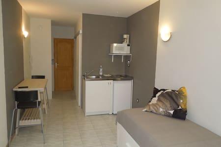 STUDIO EQUIPE HYPER CENTRE LE PUY-EN-VELAY - Le Puy-en-Velay - 公寓