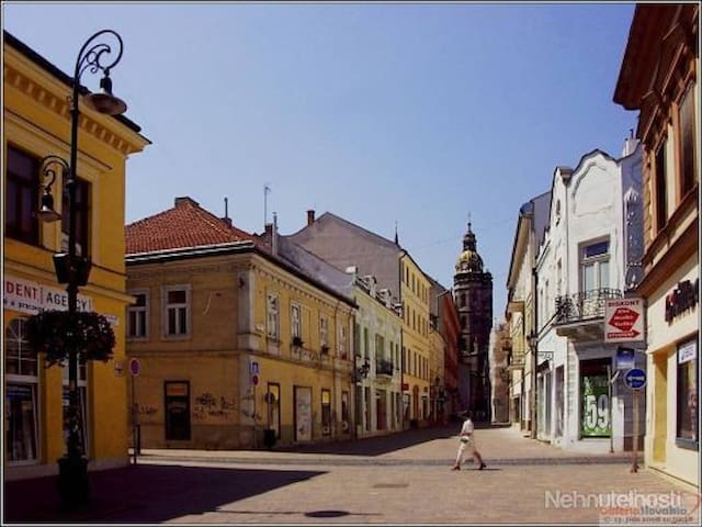 Spacious studio in the heart of Kosice