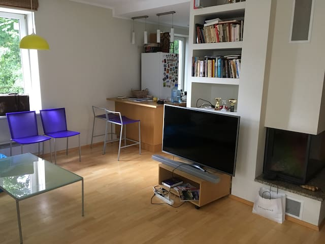 Spacious 2-floor apartment in the city center