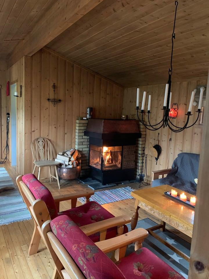 Enkel og koselig hytte i skogkanten