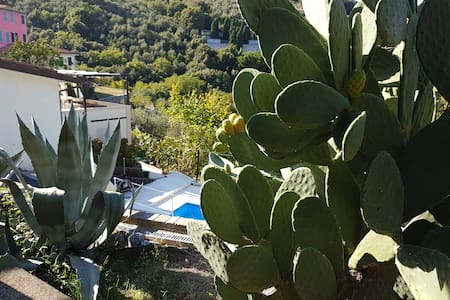 villa cinque terre  whit pool and Turkish bath - La Spezia