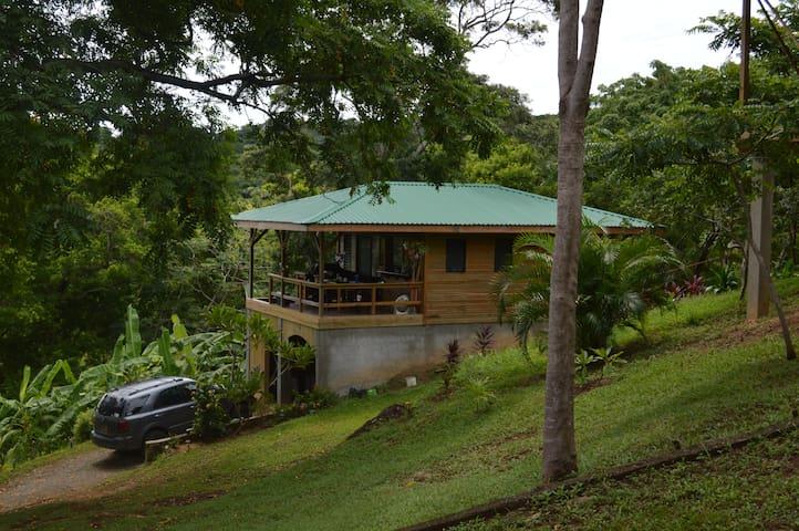 Casita Iguana Verde Where the Jungle meets the Sea