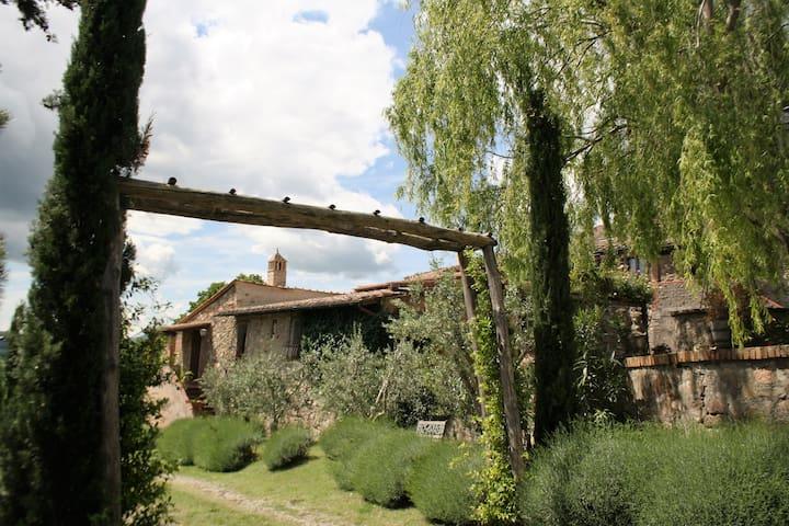 APPARTAMENTO CON 2 CAMERE - Casole d'Elsa frazione Monteguidi - Pis
