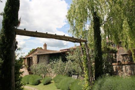 APPARTAMENTO CON 2 CAMERE - Casole d'Elsa frazione Monteguidi - Appartement