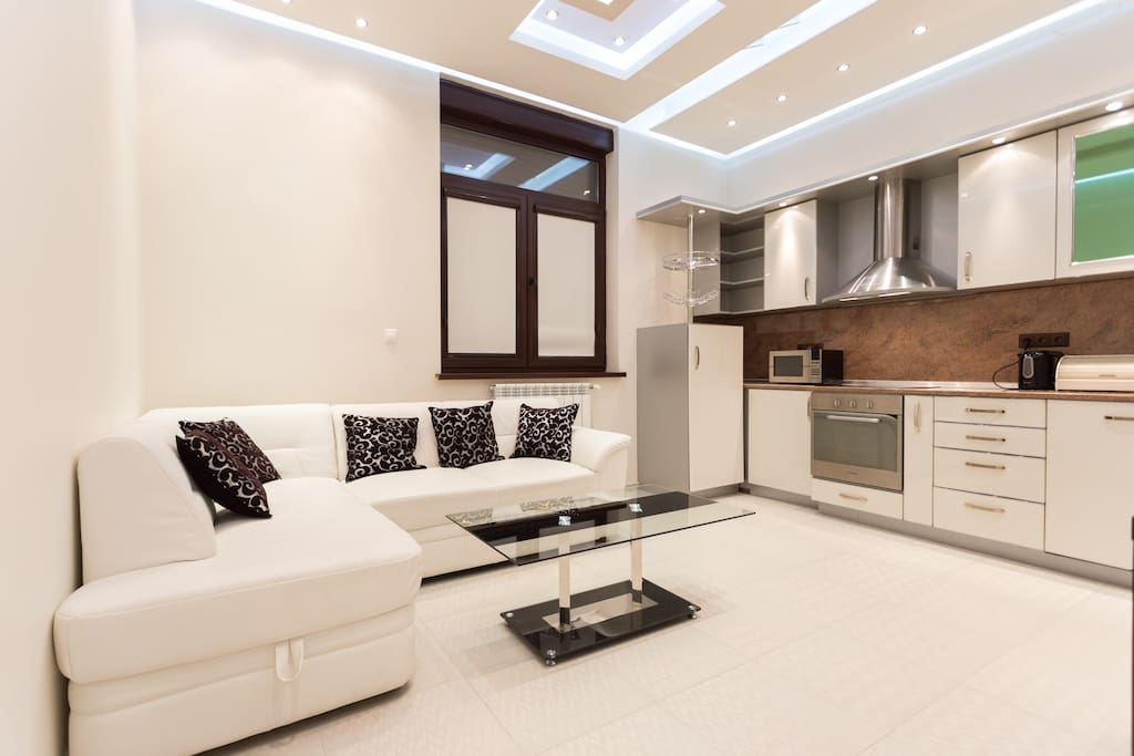 A living room with a kitchenette and a sofa bed