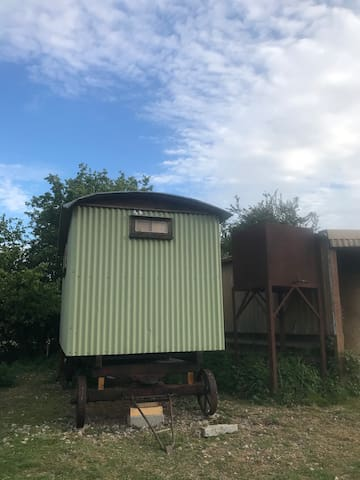 Shepherds Hut Retreat near Glastonbury