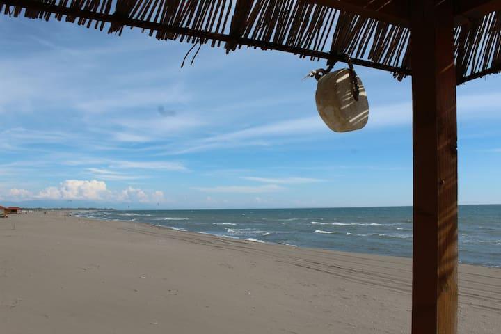 Eagle studio 2. Simple comfort on the Long beach - Doni Štoj - House