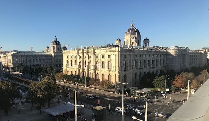 Room with THIS View! Very best Vienna location!
