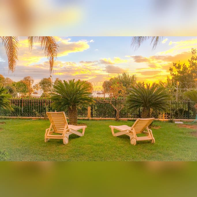 Our gardens in the evenig-sweet sunset..