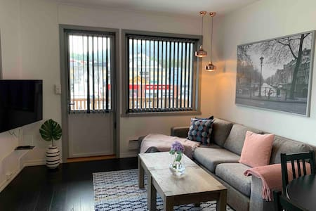 Cosy apartment in Voss centrum!