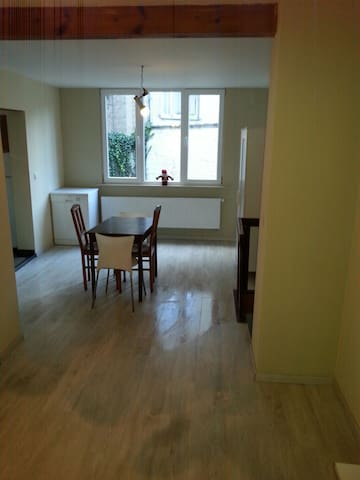 Fully renovated appartment in Brussels (Uccle) - Uccle - Apartment