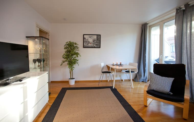Great Room with Breakfast close to Central Station - Oslo - Apartemen
