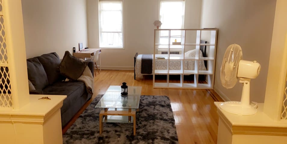 Large clean studio very well located in NY