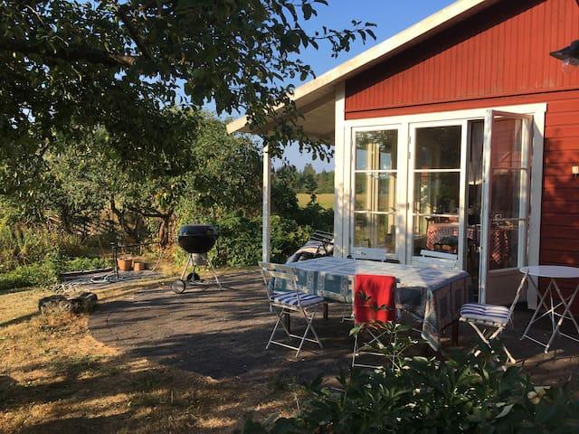 Avskild uteplats med matbord och grill. Utsikt över ängar med betande lamm. Eftermiddags - och kvällssol.