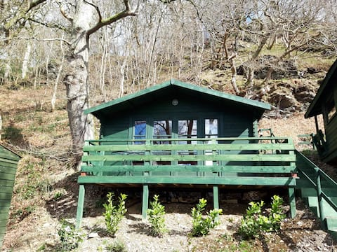 Crown Kingfisher log Cabin
