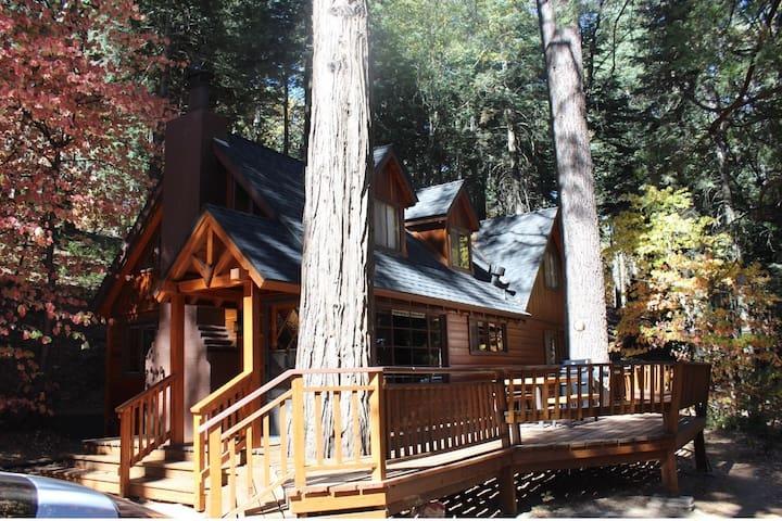 Forest Grove-1940's Charming Cabin - Lake Arrowhead