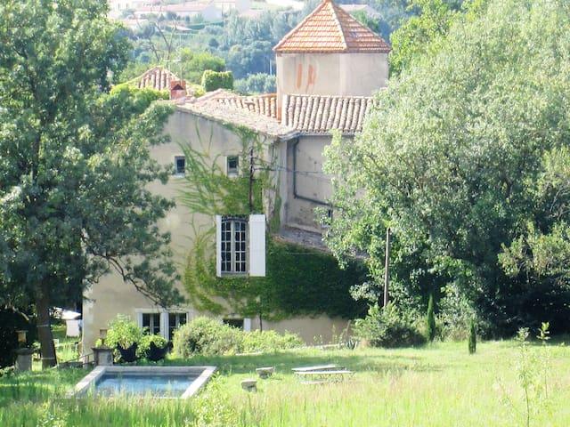 CHATEAU DE FAMILLE AUTHENTIQUE,CHIC ET BOHEME - Pieusse - Castelo