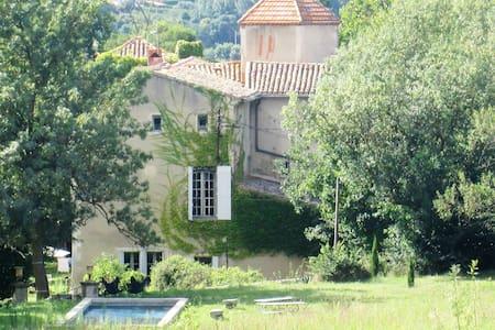 CHATEAU DE FAMILLE AUTHENTIQUE,CHIC ET BOHEME - Pieusse
