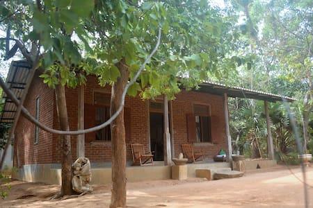 Vihanga Village - Dambulla - Bed & Breakfast