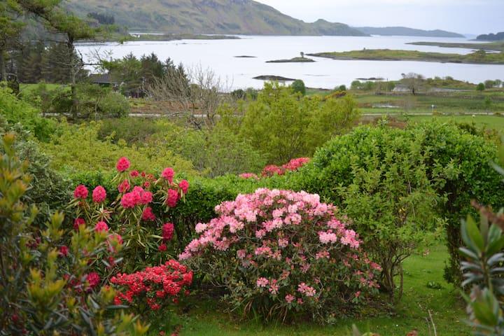 waterfront hill farm four cottages - Clachan-Seil - Casa