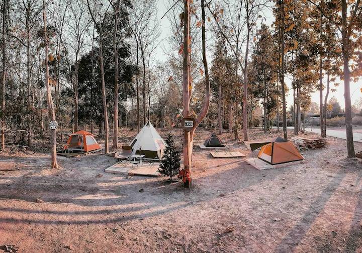 The Godung 369 Alien Teak Woods Magic Camping