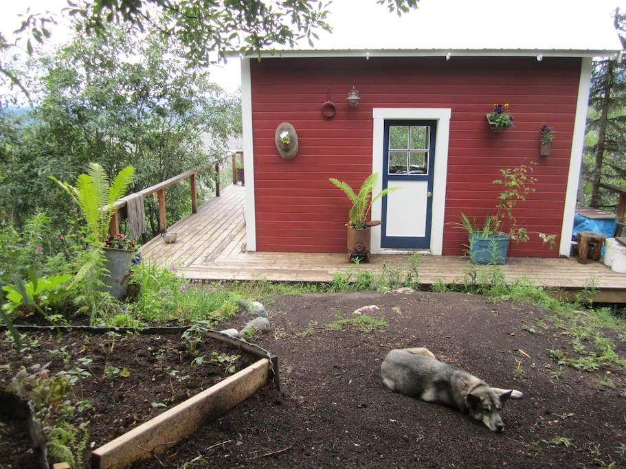 Entrance view of cabin with little perennial gardens.