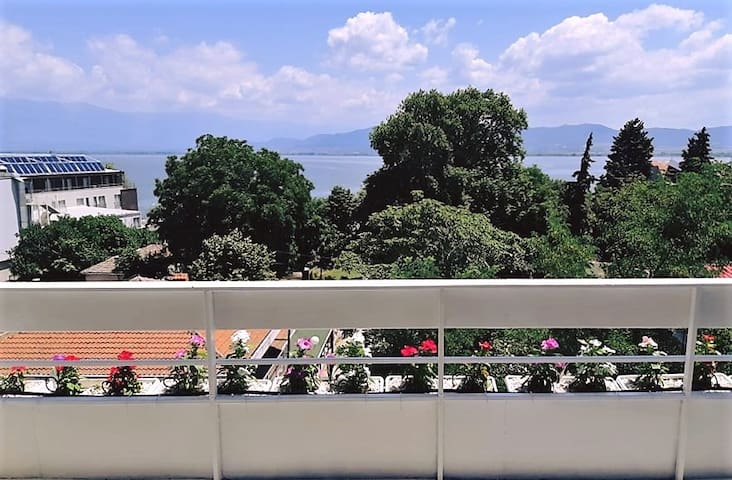 Central Apartment 50 m. from the beach