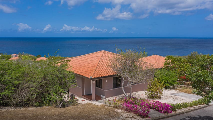 Amazing sea view retreat with infinity plunge pool