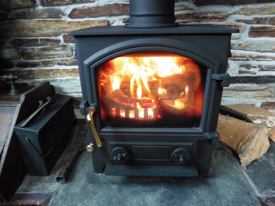 Woodburner in The Old Shippon