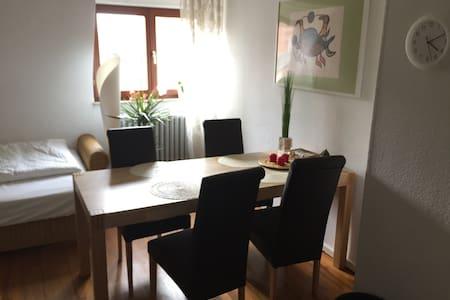 Gemütliche, freundliche Wohnung in ruhiger Lage - Mannheim - Apartament
