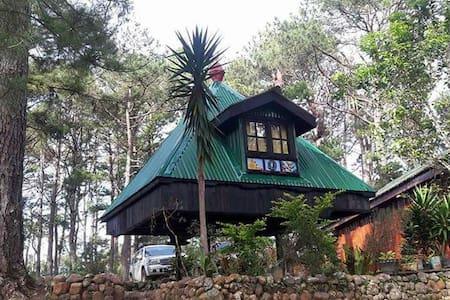 The Hut By The Brewpub