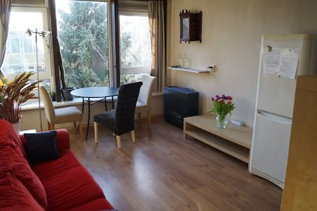 Cute, sunny apartment in Amsterdam WiFi - 阿姆斯特丹 - 公寓