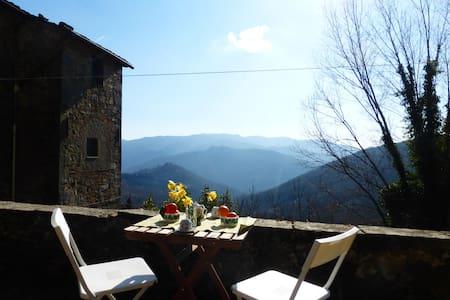 Appartamento rustico in collina - Longoio-mobbiano
