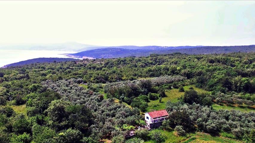 Ecohouse Oliveglia (isolated agricultural estate)