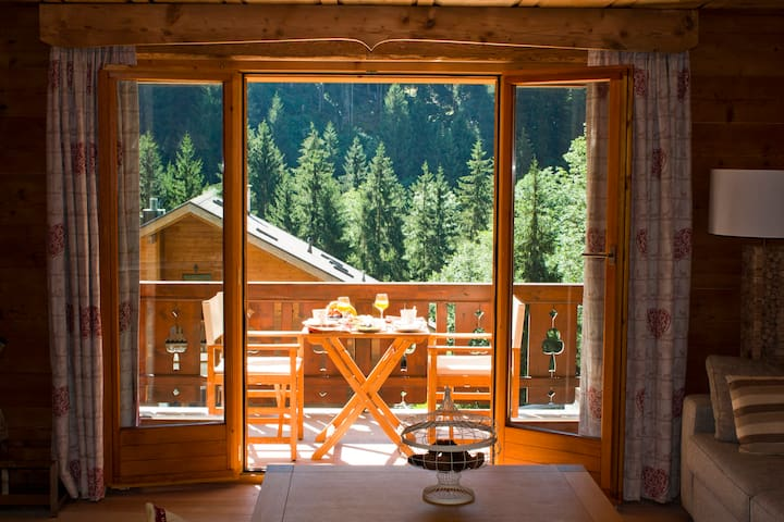 Luxurious Apartment Chalet style in Champery