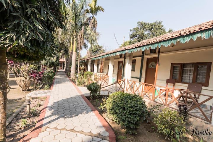 Eden jungle resort Chitwan- Triple room