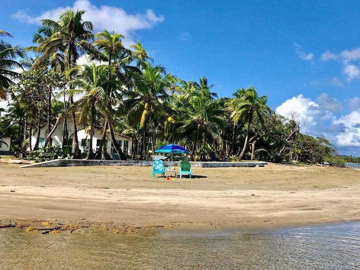 Caribbean Haven Of Nature 'Preci Beach'