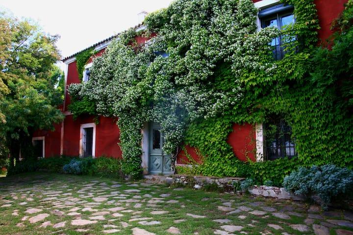 Casa Rural - Lagar Buenavista